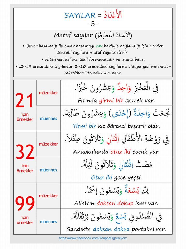 matuf sayılar arapça